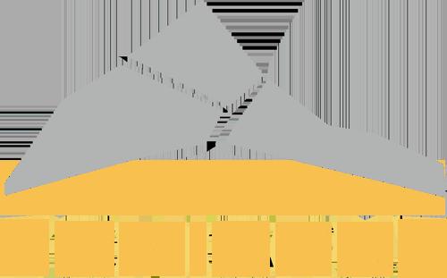 Invest Fomicruz
